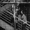 Stair Women -- Terry Avenue, Seattle (April 2013)