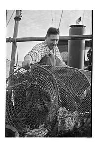Prawn Fisherman