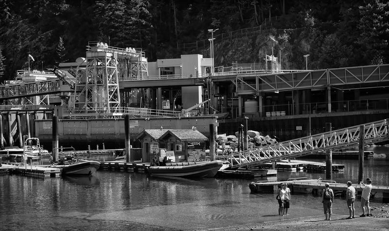 Tourists -- Horseshoe Bay, British Columbia (July 2015)