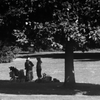 Park Visitors (1) (Soft Focus) -- Matthews Beach, Seattle (July 2012)