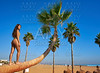 Beautiful woman standing on bent palm tree