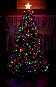 The Gabbola family Christmas tree 2009!