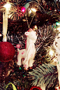 My kids all have dated Lenox ornaments given to them for their 1st Christmas. Emily's pink & cream giraffe is my favorite.