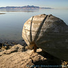 A sculpture on the shore of the Great Salt Lake, UT