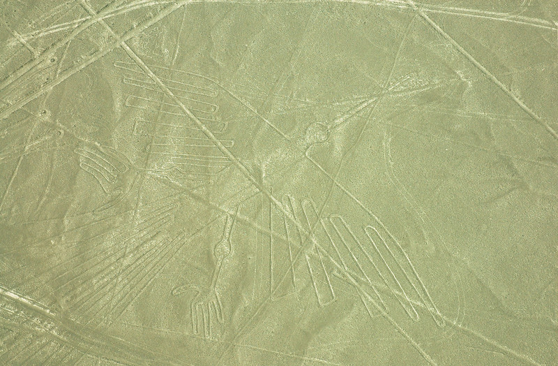 """The Condor""<br /> Mysterious Nazca Lines<br /> Ancient Geoglyphs in the Nazca Desert"