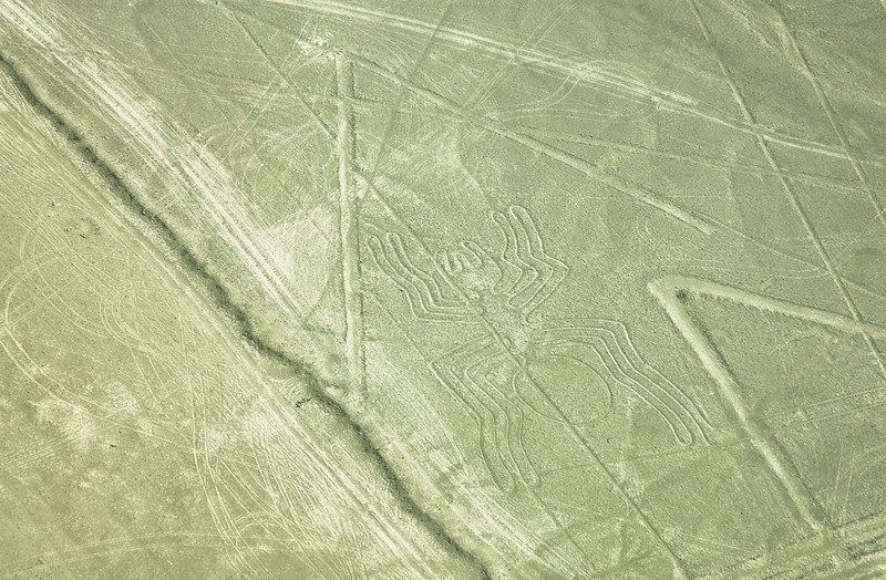 """The Spider""<br /> Mysterious Nazca Lines<br /> Ancient Geoglyphs in the Nazca Desert"