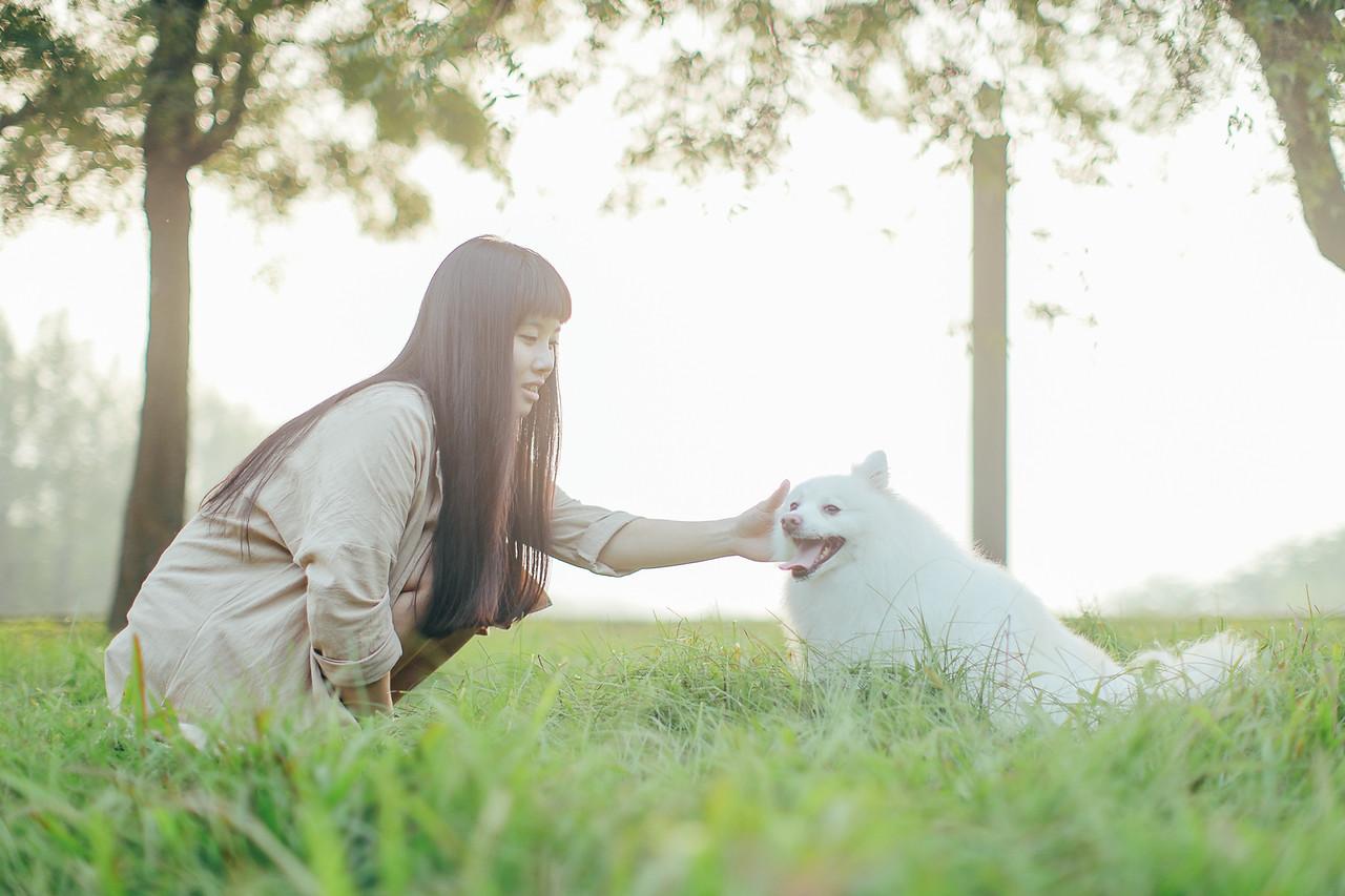 《寵物攝影》服務親切-台中在地的毛孩寫真平面攝影師 / 報價