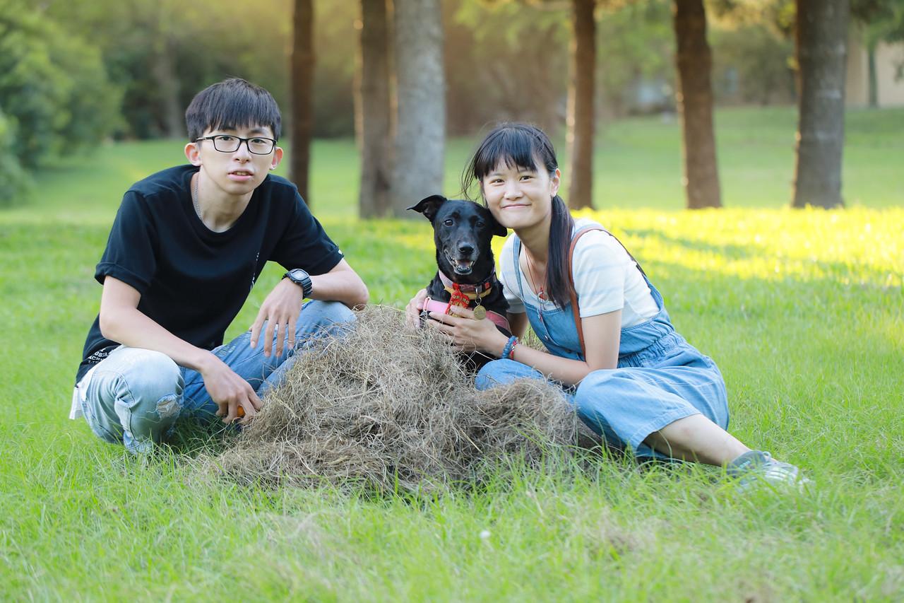《寵物寫真》今天來了一隻黑狗兄麵包 / 米克斯台中