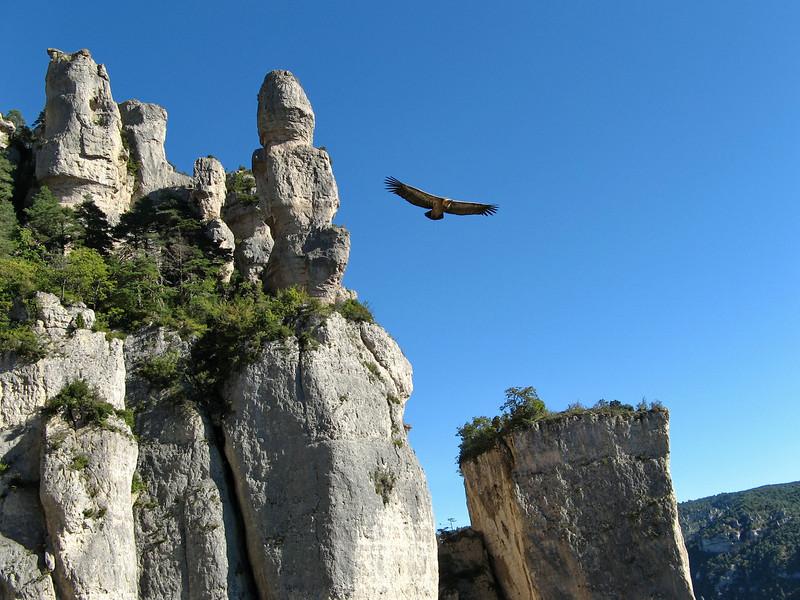 En 2006 dans les Gorges de la Jonte. Assez perturbant quand on grimpe !