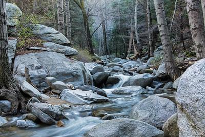 Peaceful Creek - Landscape