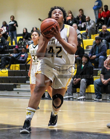 February 7, 2019: PG 4A girls matchup between Parkdale HS and Wise HS in Upper Marlboro. Photo by: Chris Thompkins/thesporstfannetwork
