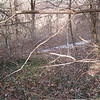 2/29/16 Report of problem in Baltimore County, Herbert Run Watershed area in Catonsville near Ingleside, by Matthew Riesner, President of Ingleside Neighborhood Association of Catonsville.  Future clean up planned for April 2016.  Photo 5 of 13