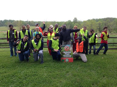4.30.16 Invasive Garlic Mustard Removal at Belmont
