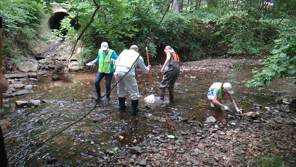 6.11.16 Stream Watcher Training Part 2 - Creek Scene Investigation along Deep Run