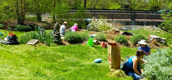 Garden maintenance at the Oella Garden off of Oella Avenue/Frederick Road in Oella