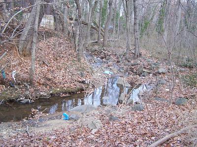1.3.08 Herbert Run Recon on Stream near Edmonson Ave. in Catonsville