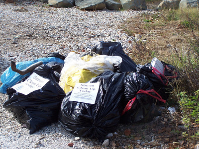 11.17.10 Patapsco River Watershed Cleanup off of Hammonds Ferry Road