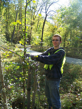 10.16.10 Tree Maintenance Along Patapsco River off the Grist MIll Trail