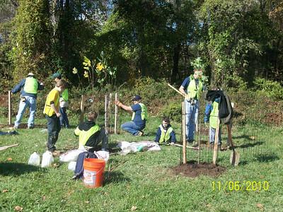 11.6.10 (2) Tree Planting-Tree Maintenance-Stream Cleanup Along Herbert Run