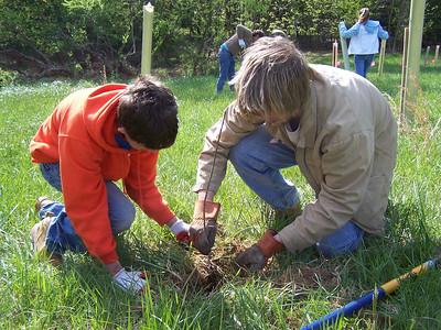 4.17.10 Tree Planting in Patapsco State Park near Historic Belmont in Elkridge