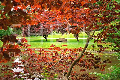 Arbor Love - Ridley Lake, PA