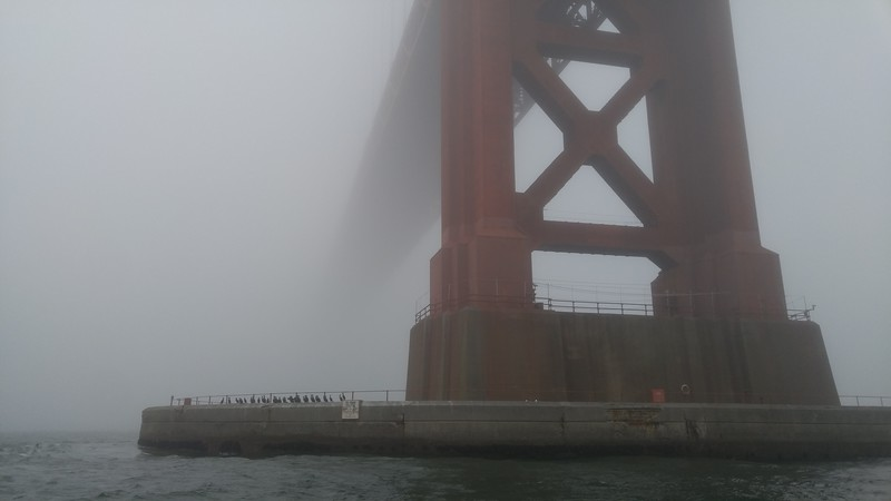 THE GOLDEN GATE BRIDGE - BEFORE EDITING
