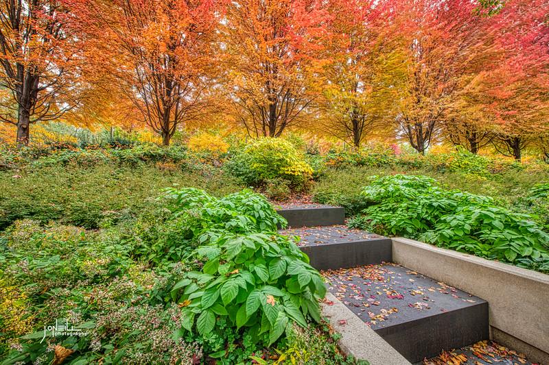 Stairway to Autumn WM - John O'Neill Photography