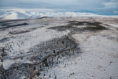 Located on the Arctic Circle, the Fishing Branch Territorial Park is a ecological treasure in a landed of stunted trees and sparse on wildlife. This image is from the flight into Bear Cave Mountain eco-adventure camp.