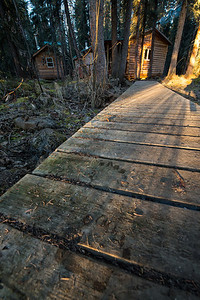 A set of fresh Grizzly Bear prints melted into the morning frost on the boardwalk at Bear Cave Mountain.