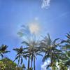 NOV 18 2012<br /> Lens Glare.<br /> Have a great day.