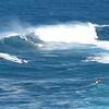 FEB 9 2013<br /> Windsurfing ( JAWS )<br /> Maui, Hawaii.