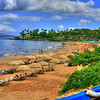MAY 30 2013<br /> U still with me on my walk along the Wailea Coast :)<br /> Maui, Hawaii