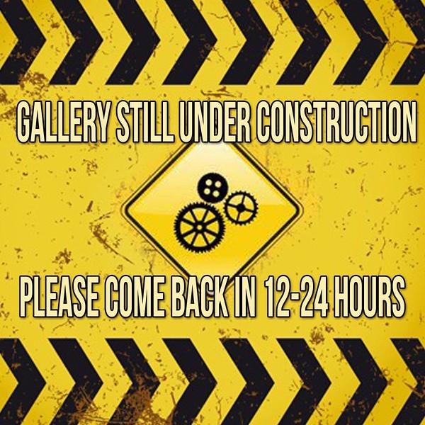 zGALLERY UNDER CONSTRUCTION ICON