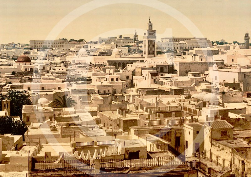 General view from Paris Hotel, Tunis, Tunisia 1899.