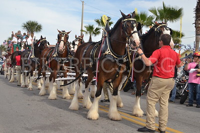 THE CLYDESDALES ON MAIN STREET, DAYTONA