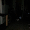 This is a still image of Archangel Raziel with my cat, Boo Boo, as captured on video the evening of November 6, 2015