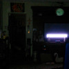 This is one still image, of two images presented, of The Light of my brother's dog, Peace; as captured on video the evening of December 16, 2016.
