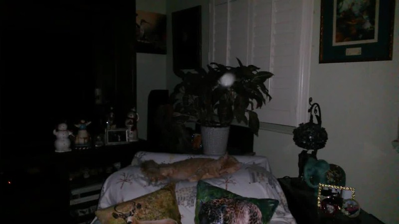 THE LIGHT OF JESUS AND ARCHANGEL ARIEL WITH MY CAT TOM (IN SLOW MOTION) - AS CAPTURED ON VIDEO THE EVENING OF SEPTEMBER 20, 2017