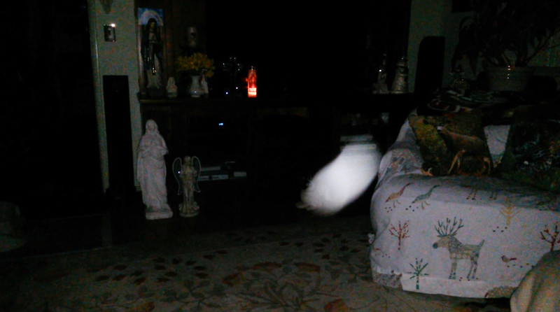 This is the fifth still image, of ten images presented, of The Holy Spirit; as captured on video Easter Eve, March 31, 2018.