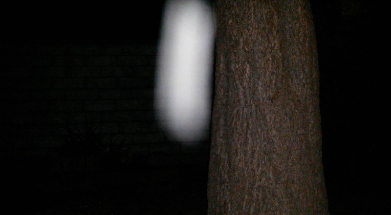 This is the one still image, of two images presented, of The Light of Jesus descending beside my Pecan tree; as captured on video the evening of September 23, 2015.