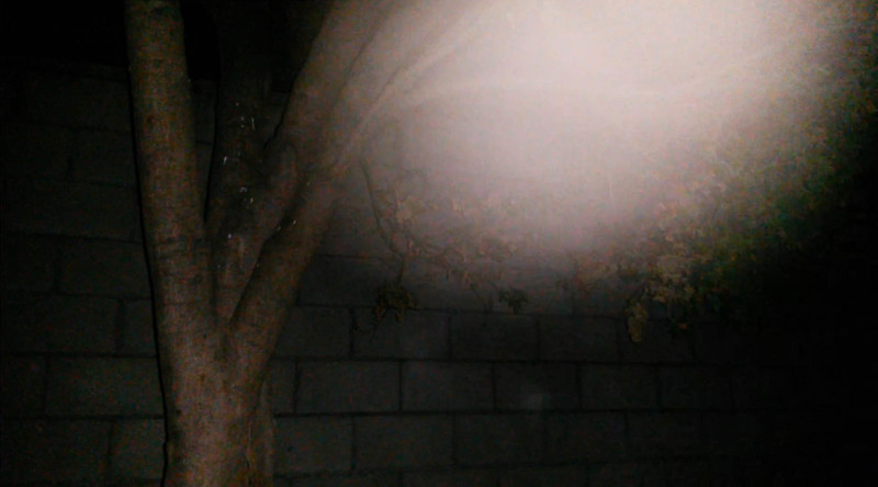 This is the third still image, of seven images presented, of The Light of Jesus; as captured on video the evening of July 19, 2016.