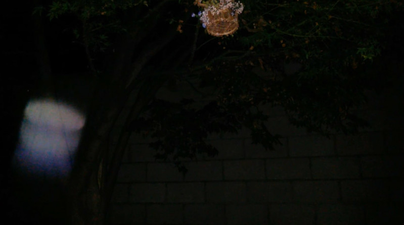 This is the tenth still image, of fifteen images presented, of The Light of Jesus; as captured on video the evening of May 15, 2014.