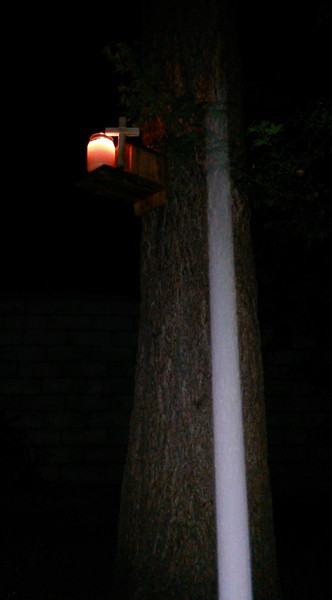 This still image, of The Light of Jesus descending over my Pecan tree, was captured on video the evening of July 2, 2014.