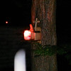 This is the second still image of The Light of Jesus, captured on video taken on the evening of May 16, 2014. Jesus appeared at the top of the Pecan tree and literally descended and dive bombed in front of my camera! There was a large flash of Light when He came down. <br /> <br /> On this evening, I had placed my Jesus bust (that I bought in Paris in the year 2000), a wooden cross, and a burning white candle on the munch box I have mounted on my Pecan tree. NOW, BE SURE AND LOOK AT THE NEXT IMAGE TO SEE THE HUMOR OF JESUS REGARDING THE BUST ON THE MUNCH BOX.