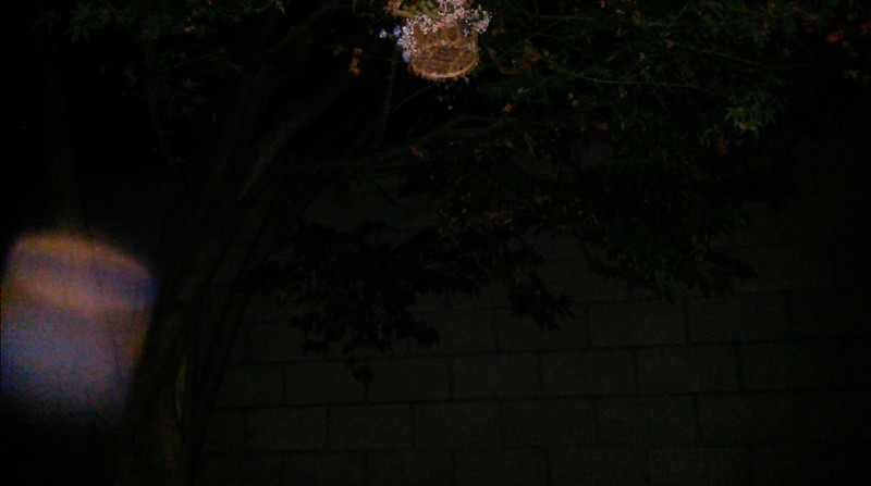 This is the sixth still image, of fifteen images presented, of The Light of Jesus; as captured on video the evening of May 15, 2014.
