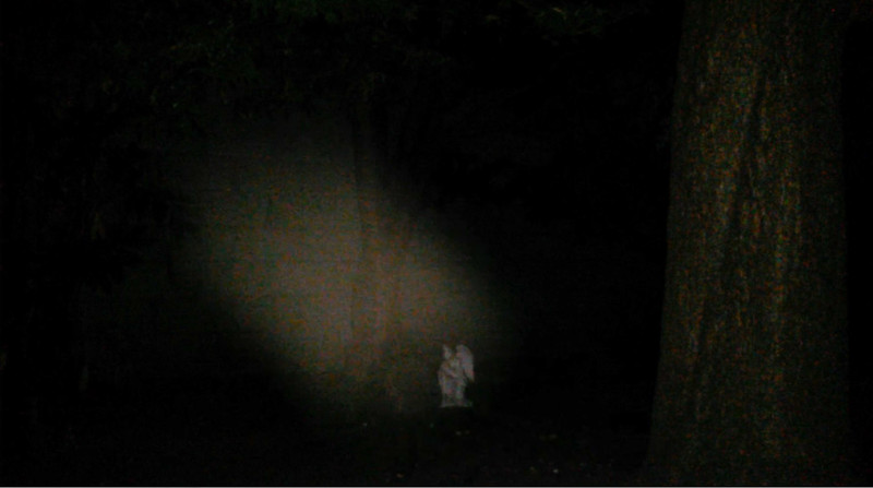 This is one still image, of two images presented, of The Light of Jesus ascending over my Angel statue; as captured on video the evening of July 4, 2017.
