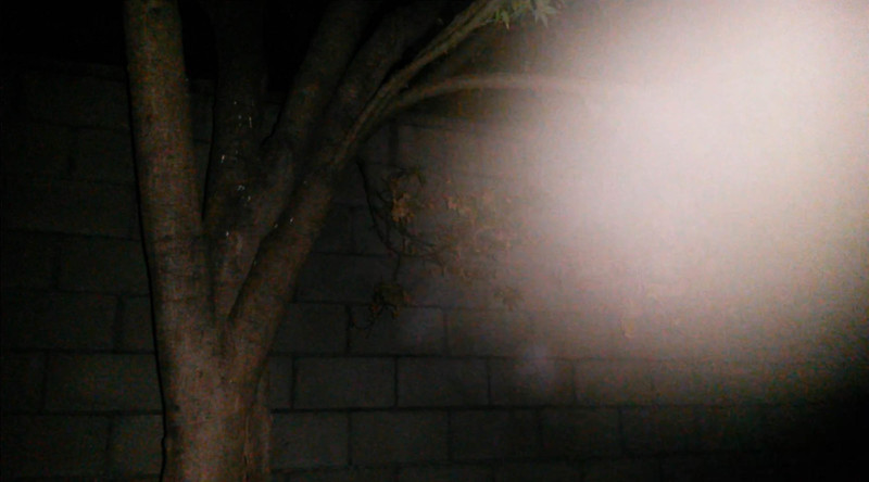 This is the second still image, of seven images presented, of The Light of Jesus; as captured on video the evening of July 19, 2016.