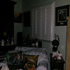 This is the eighth still image, of fourteen images presented, of The Light of my friend's mother, Trixie; as captured on video the evening of November 2, 2018.