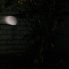 This is one still image, of three images presented, of The Light of Jesus; as captured on video the evening of October 29, 2017.