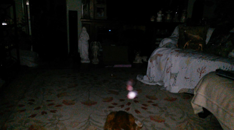 This is the eighth still image, of twenty-six images presented, of The Light of Mother Mary; as captured on video the evening of April 30, 2018.